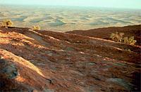 [Outback Vista atop Uluru]