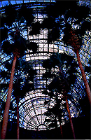 [Wintergarden Palms and World Trade Center]