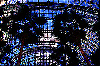 [Twin Towers and Palm Trees from inside the Wintergarden]