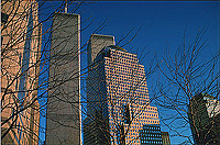 [Wintertime View of World Trade Center and Financial Center]