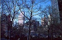 [View of Twin Towers from Battery Park in the Spring]