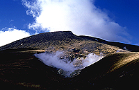 [Natural Hotsprings in Tongariro]