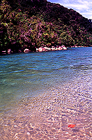 [Sparkling Waters on Abel Tasman Trek]
