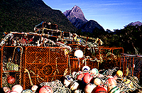 [Lobster Traps in Milford Sound]