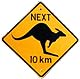 [Kangaroo Crossing]