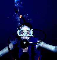 [L.A.Bernstein Scuba Diving]